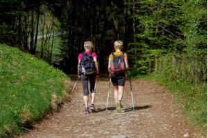 Dzięki nim pokochasz ten sport - czyli malownicze trasy nordic walking w Polsce