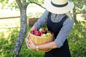 9 jesiennych prac w ogrodzie, o których nie powinnaś zapominać.