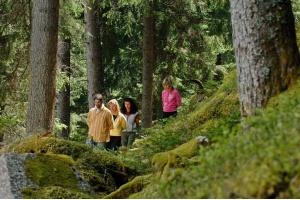 """Trentino - włoski region z opcją """"natural wellness"""""""